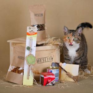 Dárková bedna pro kočku